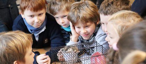 Zoo diena mokykloje