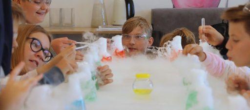 Ekologinis iššūkis – eksperimentai laboratorijoje